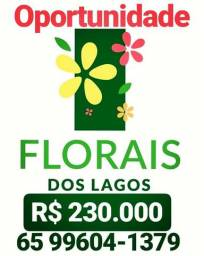Florais dos Lagos - Escolha o Seu?