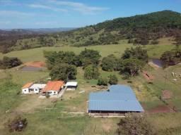 Fazenda 25 Alqueires ( 121 hectares )-Varjão-GO porteira fechada