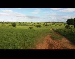 Otima Fazenda com 190 hectares entre bom jesus e São Pedro do Potengi