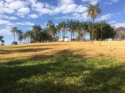 Fazenda de 47 alqueires Paulista em Campina Verde-MG