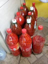 Vende-se pimenta cumarizão