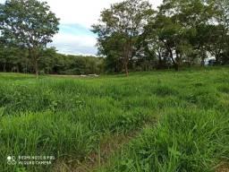 Fazenda no município de Itapuranga-go
