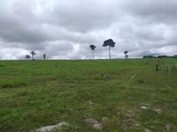 Fazenda com 1 dormitório à venda, por R$ 11.500.000 - Zona Rural - Machadinho D'Oeste/RO
