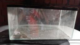 Troco aquário com um rachado no fundo por roedores