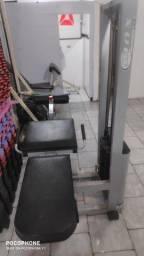 Cadeira extensora / flexora profissional