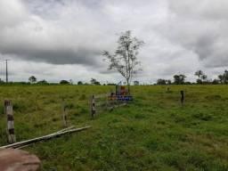Sítio à venda por R$ 600.000 - Zona Rural - Nova Brasilândia D'Oeste/RO