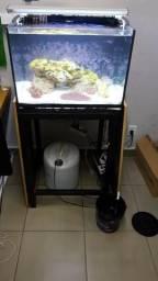 Aquario marinho nano pronto pra usar