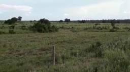 Fazenda de 853 hectares .400 hectares mecanizados . Colinas do Tocantins- TO
