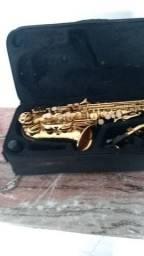 Saxofone dolpin