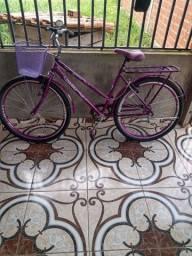 Bicicleta Violata