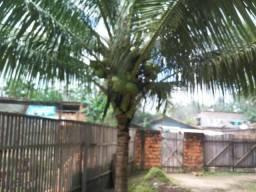 Casa em sítio com aluguelsuper barato.Tratar com Nazareno *05