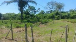 Vende_se uma colônia 30 hectares na transa acreana Ramal jarinal