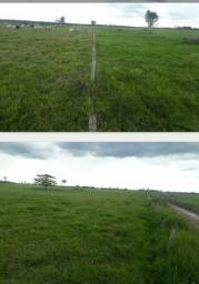 Fazenda com 1 dormitório à venda,  m² por R$ 36.000.000 - Zona Rural - São Francisco do Gu