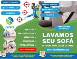 Dedetização sanitizacão e limpeza de sofa