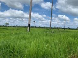 Sítio com 2 dormitórios à venda, por R$ 770.000 - Zona Rural - Machadinho D'Oeste/RO