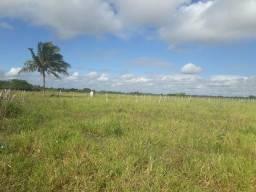 Fazenda com 43 hectares em nisia floresta