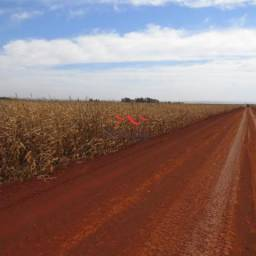 8051 | Fazenda à venda em NÃO INFORMADO, DOURADOS