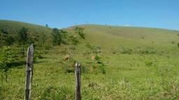 Fazenda com casa sede e casas de caseiro (Canas/SP)