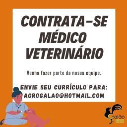 Contrata-se médico veterinário