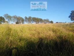 Fazenda para pecuária há 5 km da MT 010