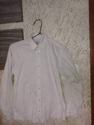 Camisa palomino tm 10