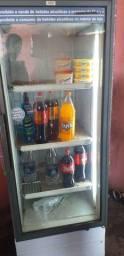Freezer Vestical 400