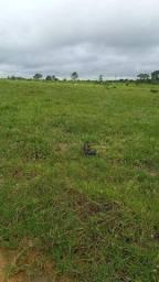 Fazenda à venda por R$ 25.000.000 - Zona Rural - Cujubim/RO