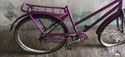 Bicicleta Poti Barata