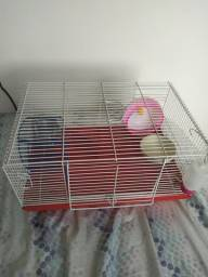 casa grande para hamster