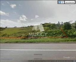 Grande oportunidade, área às margens da BR-324, município de Candeias-BA