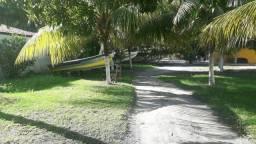 OPORTUNIDADE, sítio em massaqueira de frente  p/ Lagoa.