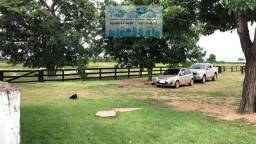 Fazenda dupla aptidão em Poconé com 328 hectares
