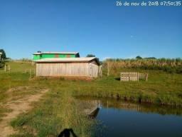 Velleda oferece lindo sítio 2 hectares em Gravataí, casa nova e açudes