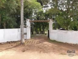Chácara para alugar com 4 dormitórios em Campo redondo, Araucária cod:2600