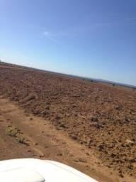 3.700 hectares, Terras argilosas, lavoura e pecuária, 200 sacas/hectares MT
