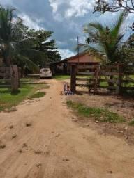 Fazenda à venda, Zona Rural - Machadinho D'Oeste/RO