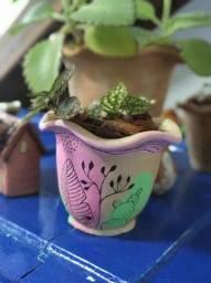 Plantas em vasos pintados