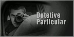 Investigadora profissional - detetive particular