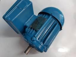 Motor monofásico 1 cv baixa rotação 1700rpm  voltagem 110/220