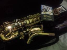Instrumento de loja novo sax alto jahnke