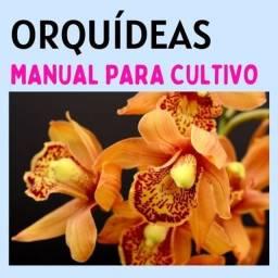 Orquídeas - Manual de Cultivo Para flores mágicas!