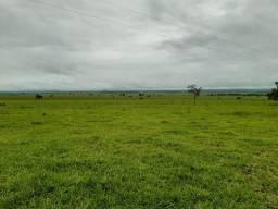 Fazenda de 400 alqueires em Montes Claros