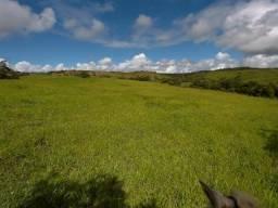 Fazenda de 145 Tarefas em Salgado, Se