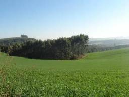 Sítio Capão Bonito (79 hectares) - Arapoti/PR