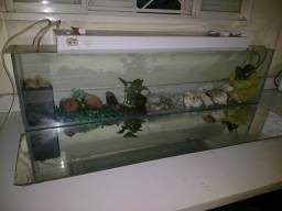 Aquario Vidro 36 litros