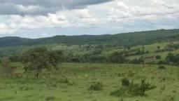 427 Alqueires a 48 km de Doverlândia terra toda de cultura de bacuri