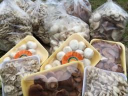 Cogumelos e morango