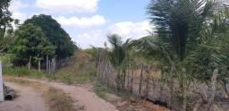Vendo Terreno com Meio hectare em Café do Vento/ Sobrado PB