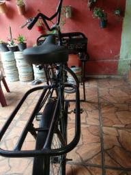 Bicicleta Cargueira