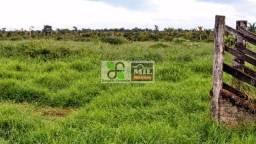 Fazenda em Santana do Araguaia-PA (Pecuária e Soja)